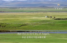Amazing China: Maqu Wetland from the above