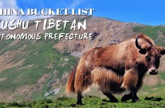 Travelogue- China Bucket List丨Yushu Tibetan Autonomous Prefecture