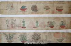 Preventing Epidemics with Tibetan medicine II