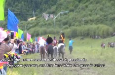 Traditional horse race festival kicks off in Songpan County, Sichuan Province