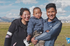 Yak Video| A village in Tibet, China bids farewell to wheelchairs
