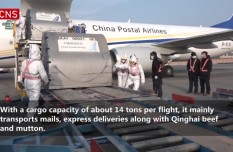 Largest all-cargo air route on Qinghai-Tibet Plateau opens