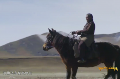 The Friendship Between Tibetan people and Horses I
