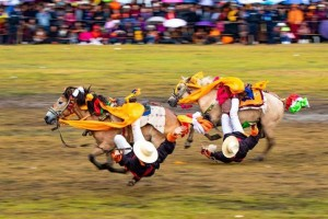 Horse Racing Culture on the Grassland