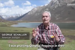 George Schaller, exploring the beauty of nature on the Qinghai-Tibet Plateau