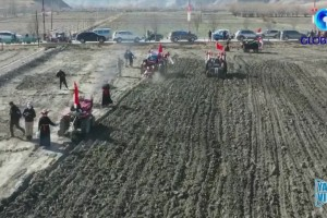 Spring ploughing ceremony held in Kesong, China's Tibet