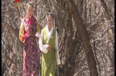 Derong: the peach blossoms in spring