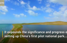 China's first national park report released in Qinghai