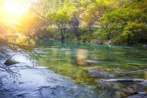 Glamorous Sichuan Part 3 - Colorful waters of Jiuzhai Valley