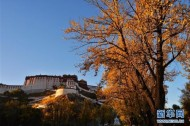 One-day tour booms in Tibet