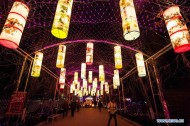 Lantern fair greeting upcoming Spring Festival held in Weifang City