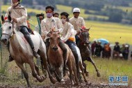 Across China: Tibetan herders record path out of poverty in notebooks