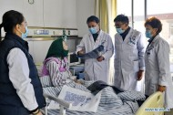 Hydatid disease effectively contained thanks to thorough screening, free treatment in Tibet