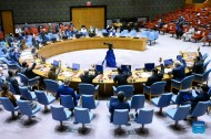 Security Council approves technical rollover for mandate of UN mission in Libya