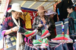 Tibet's foreign trade up 2.6 pct in 2019