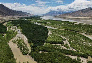 Tibet completes first aerial afforestation project