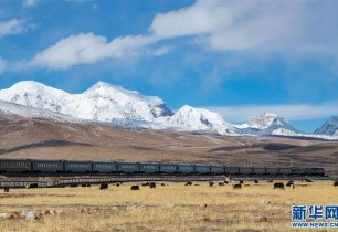 Scenery along the 'sky road': A trip aboard the Qinghai-Tibet train