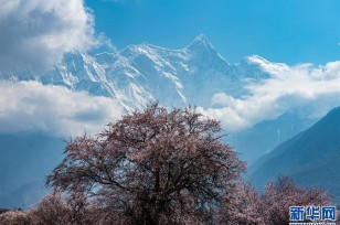 Tibet's Yarlung Zangbo Grand Canyon gains national recognition