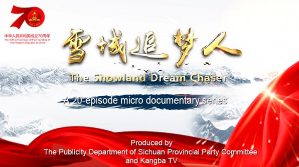 The Snowland Dream Chaser