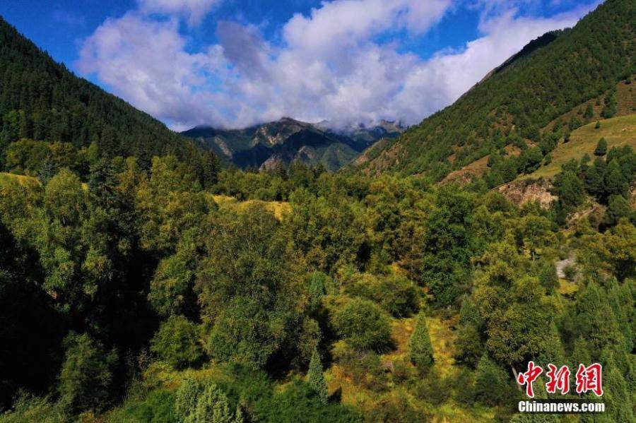 Autumn scenery of Qilian Mountains in NW China's Qinghai