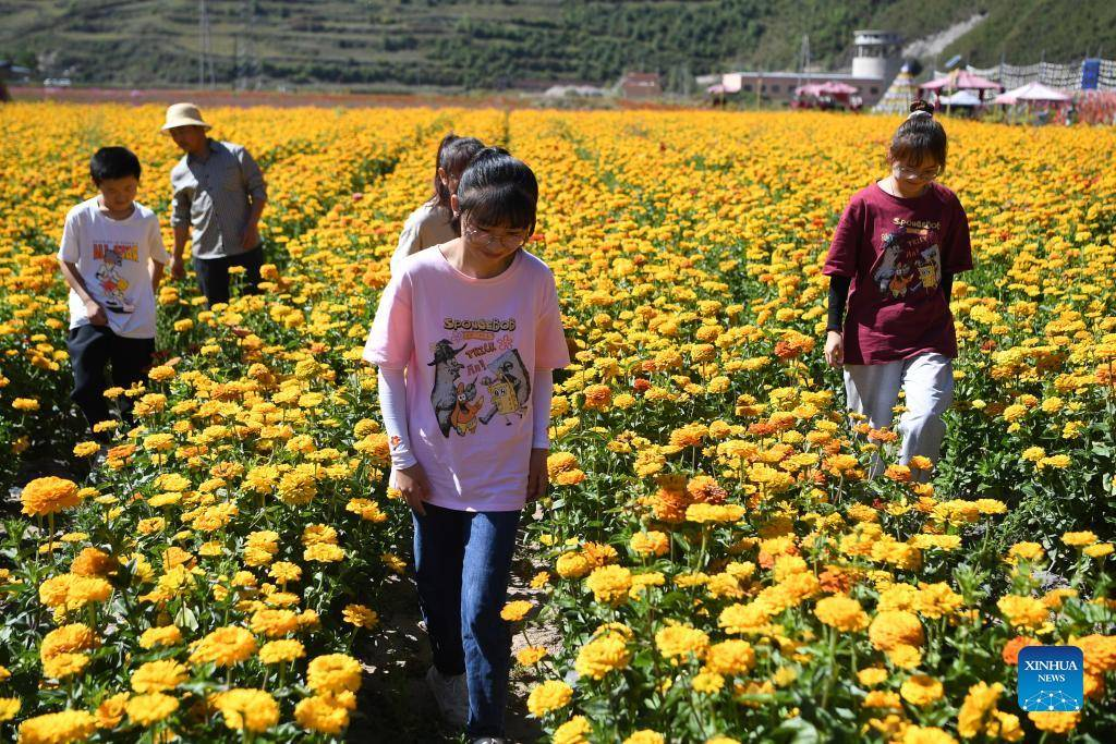 Rural tourism increases villagers' income in Gansu