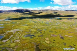 Aerial view of Lhato wetland in Qamdo, Tibet
