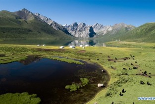 Eco-China: Qinghai takes on new look on ecological environment