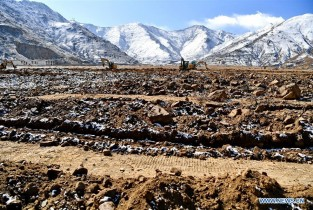 Afforestation project increases income for relocated households in Lhasa
