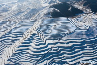 Snow-covered terraced fields in Gansu