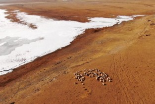 In pics: Qinghai Lake after snow